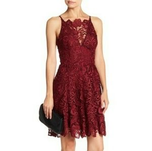 Dress The Population New Lace Fit & Flare Dress